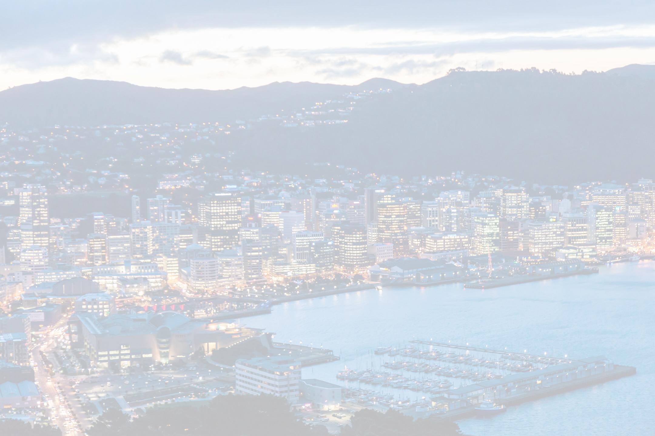 White wash image of Wellington