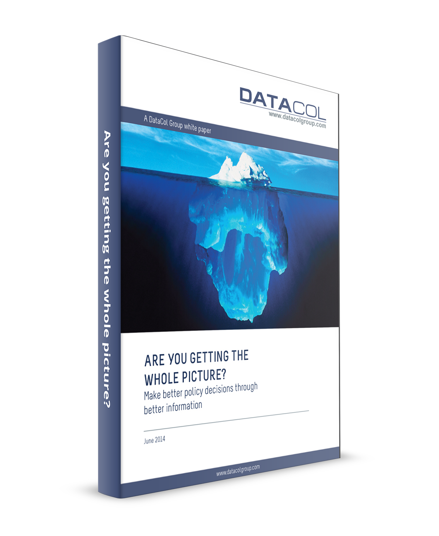 DataCol Smarter Data Whole Picture WP 3Dcover.png