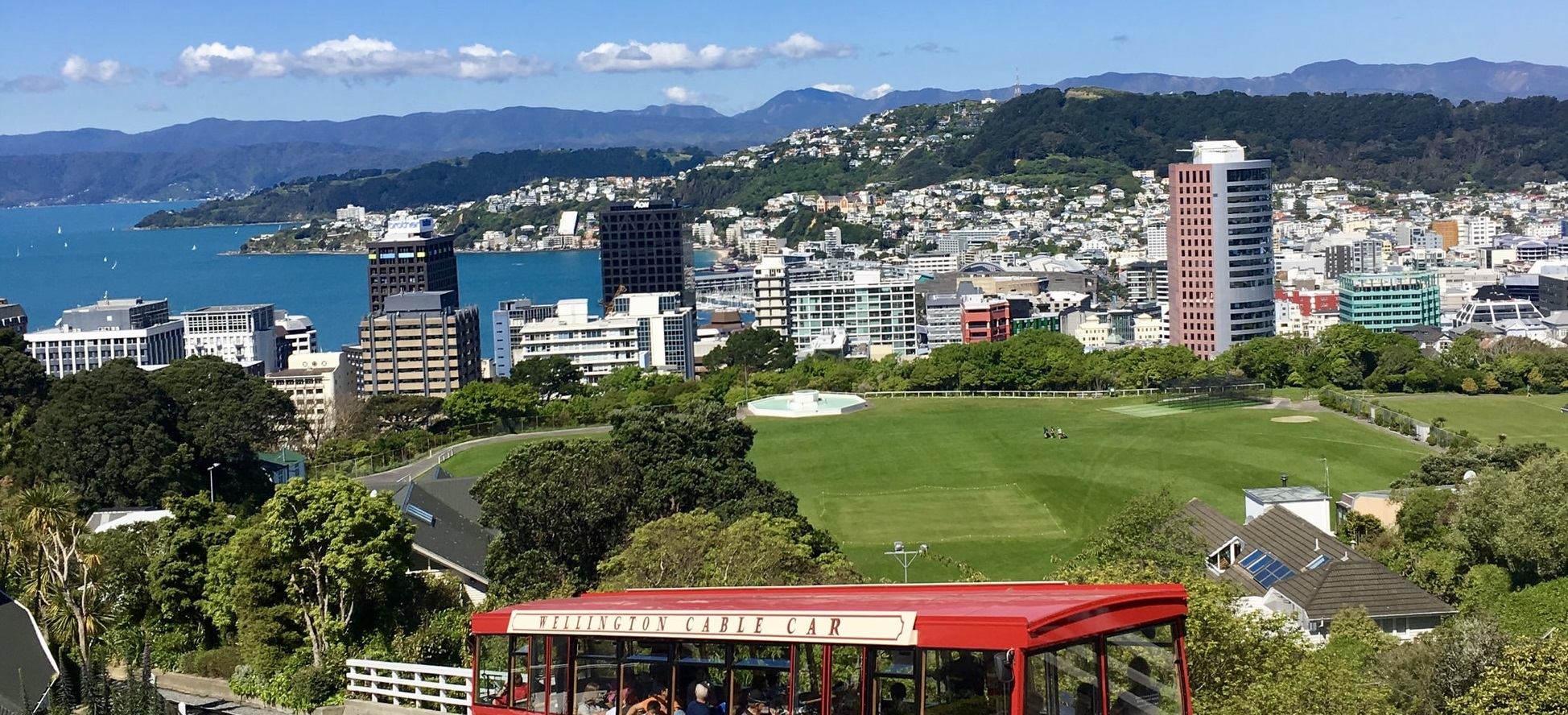 Wellington landscape